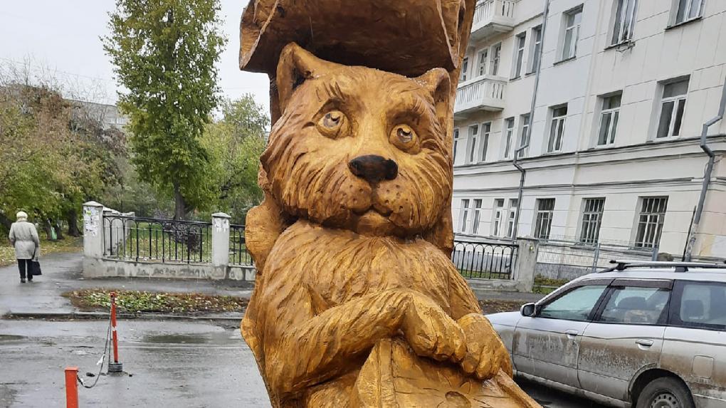 Кота-учёного подарили Новосибирску. ВИДЕО