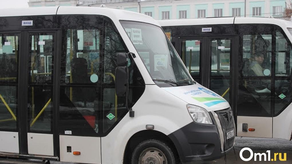 Омским перевозчикам запретили свободно менять и отменять маршруты