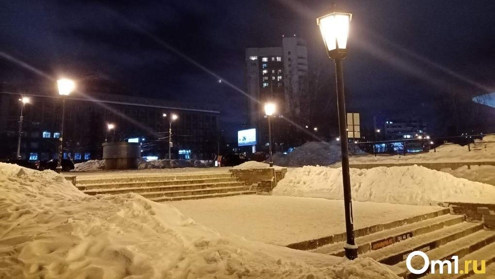 Более 5500 новосибирцев выбрали проект благоустройства площади у цирка