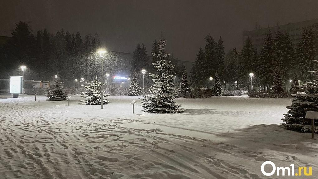 Морозную зиму в Новосибирске прогнозируют синоптики