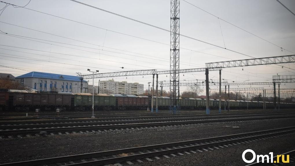 Новый железнодорожный мост в Омске будет в 1,5 раза длиннее старого