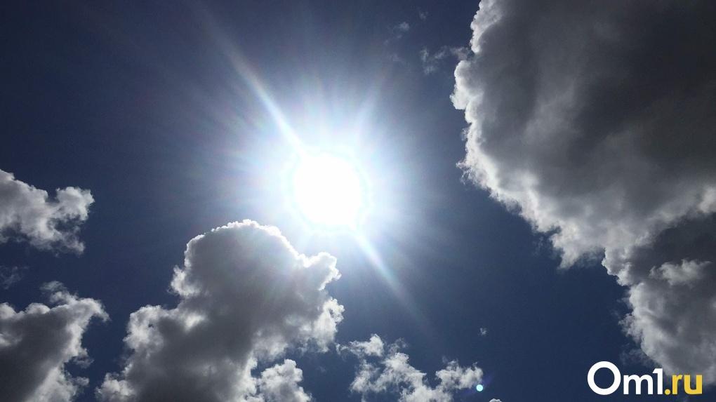Аномальная жара в Новосибирске: синоптики прогнозируют до +33 градусов