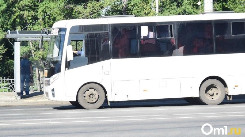 «Угроза жизни и здоровью». Чиновники объяснили причину отсутствия автобусного сообщения в омских сёлах
