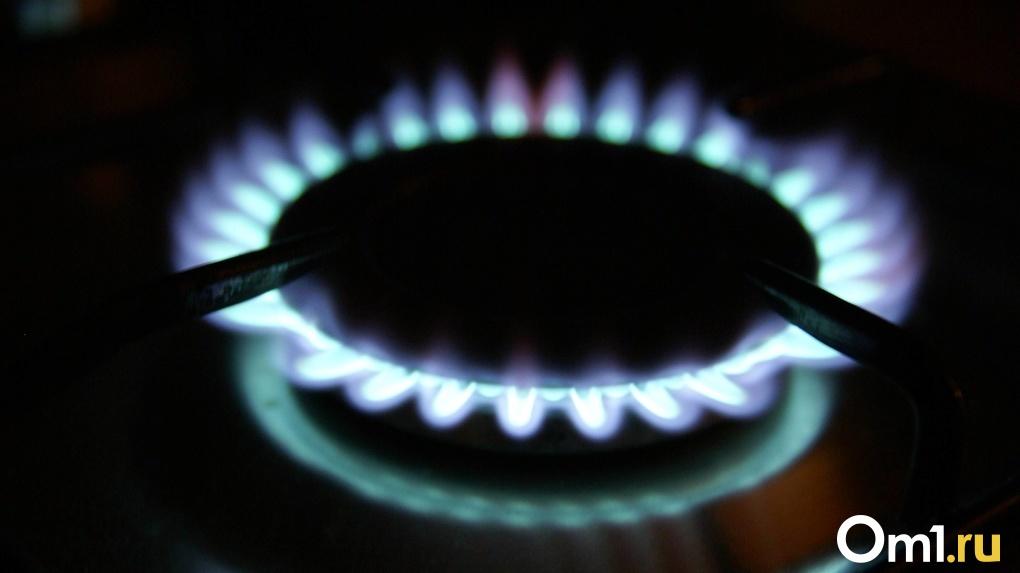 Названа сумма, которую потратят на газификацию в Новосибирской области в ближайшие пять лет