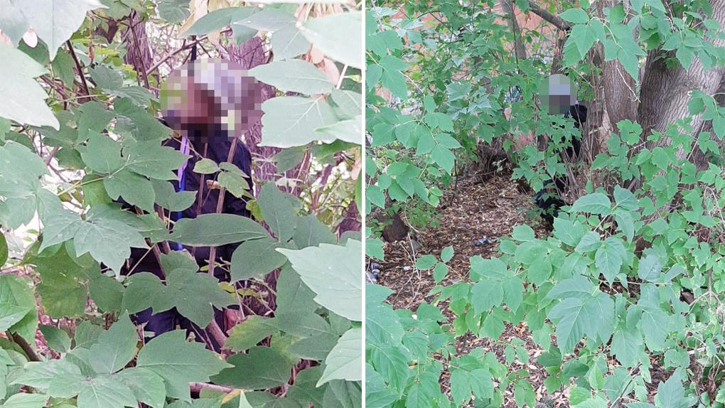 Висел на колготках: стали известны подробности обнаружения неопознанного трупа мужчины в Новосибирске