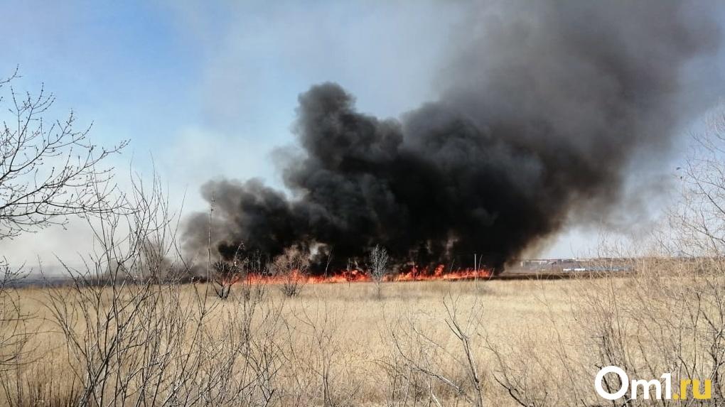 Власти Новосибирской области утвердили меры по реализации особого противопожарного режима