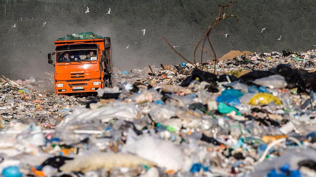 Главная «мусорная» компания Новосибирска идет к банкротству