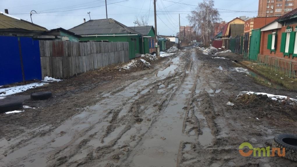 Омский архитектор заявила, что частные секторы в центре Омска – это хорошо