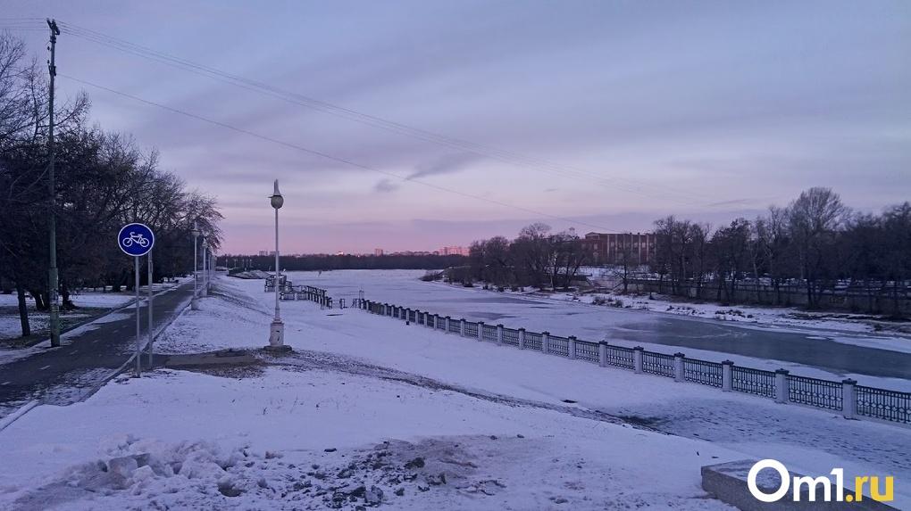 В Омской области к концу года появится пешеходный мост через Омь