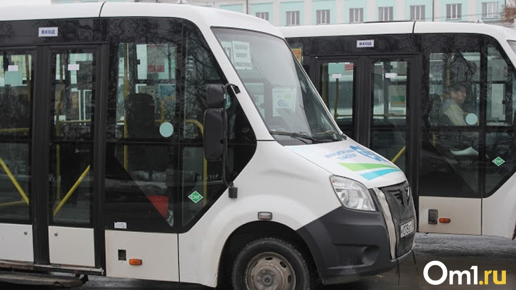 Частные омские перевозчики снизили стоимость проезда для льготников. Список маршрутов