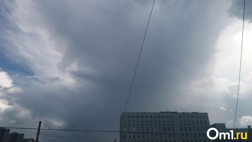 Зонт в помощь: проливные дожди придут в Новосибирск на выходных