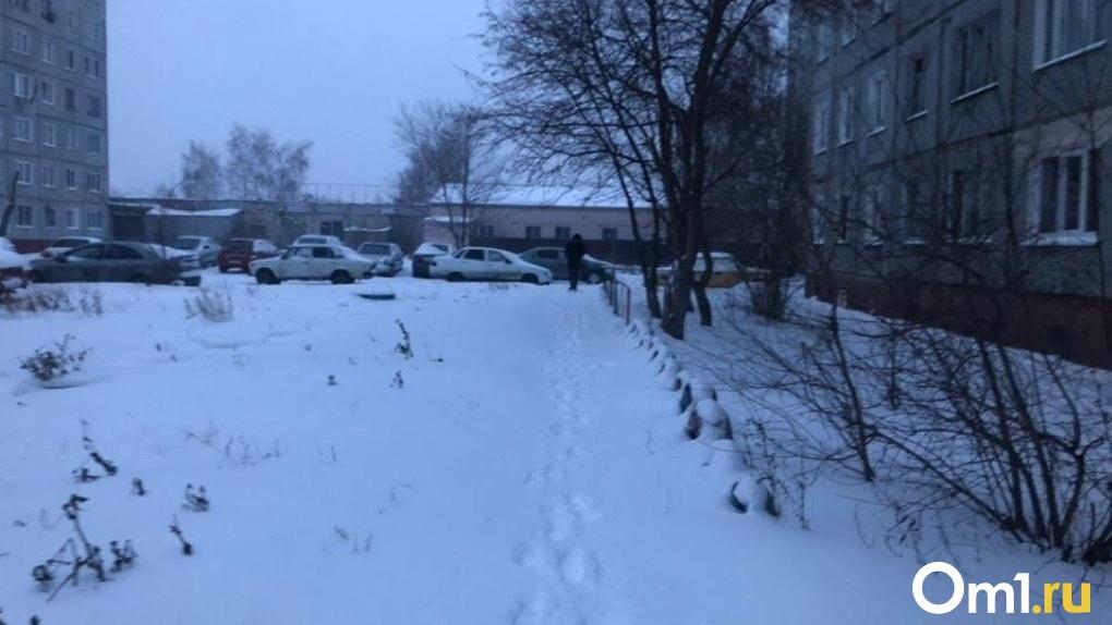 В припаркованной во дворе иномарке нашли труп омички
