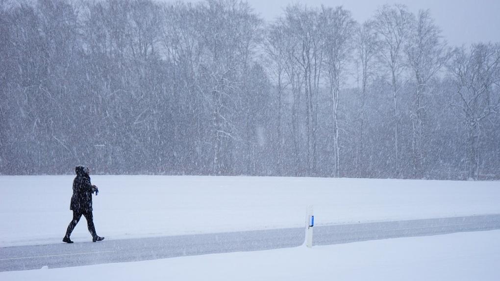 В Новосибирске объявили штормовое предупреждение из-за снежной бури