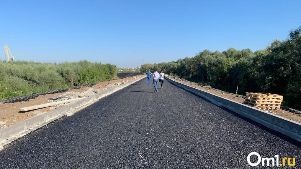 Дорогу-дублёр на Левобережье, построенную за 1 млрд рублей, расширять не будут – мэрия