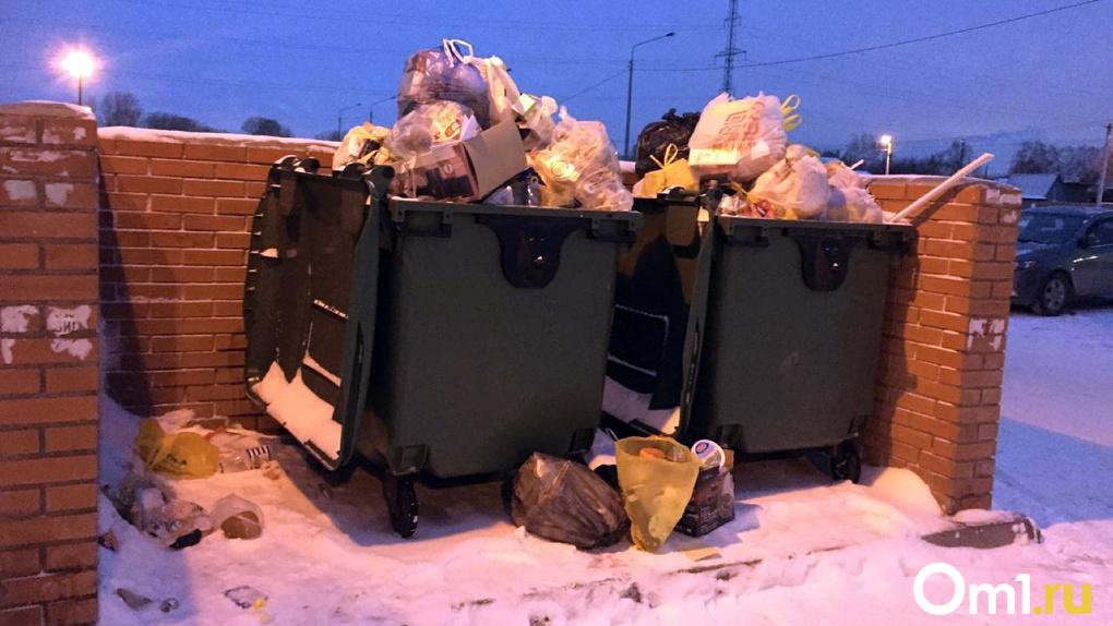 300 млн рублей задолжал новосибирский «мусорный» оператор перевозчикам, некоторые решили уйти с рынка