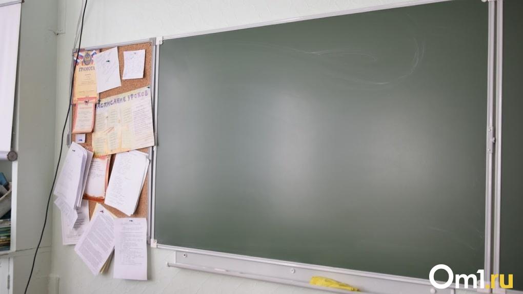 В Омске коллектив адаптивной школы требует вернуть уволенного директора