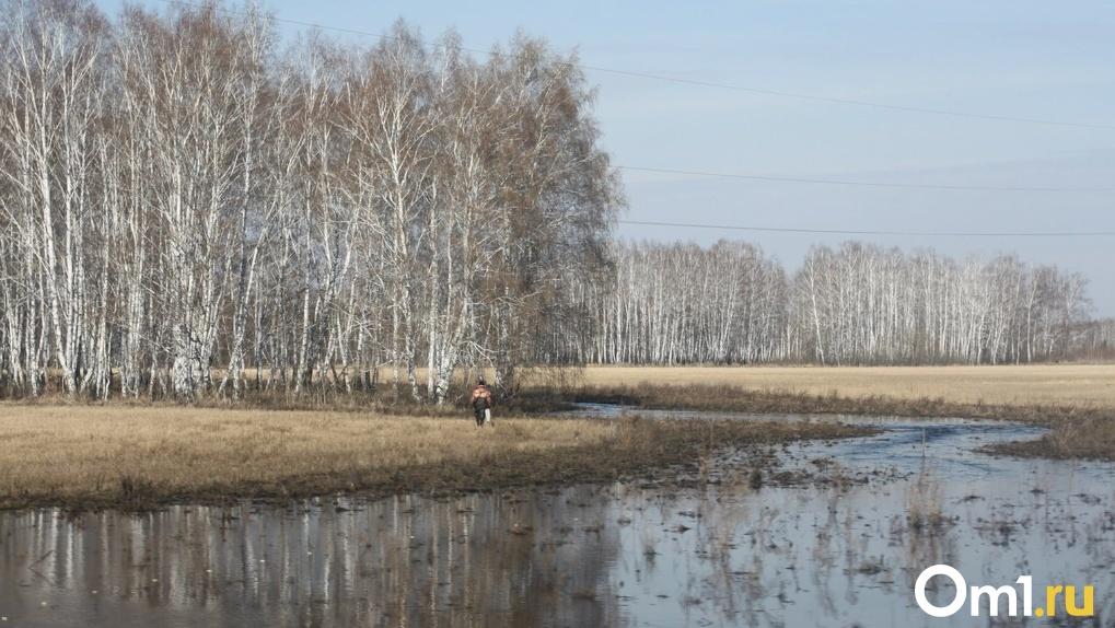 Паводок в Новосибирске: под воду ушли семь дачных участков