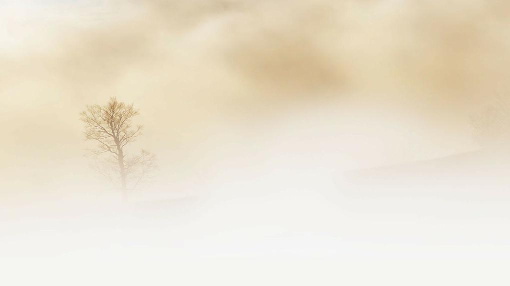 Омичам обещают туманное и мокрое воскресенье