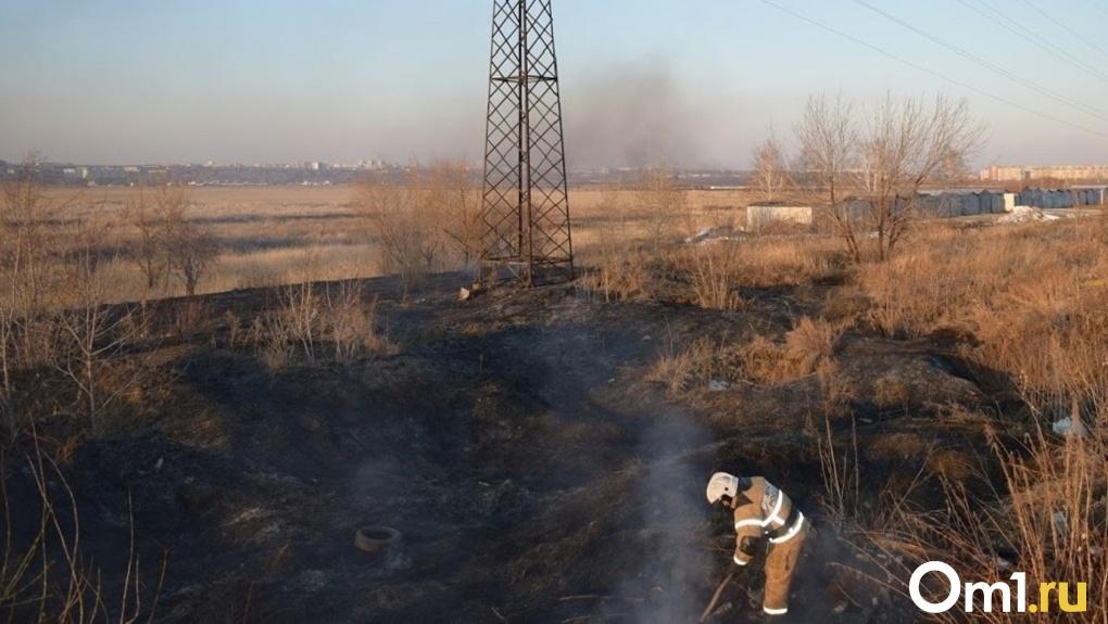 Огненное кольцо: почти пять тысяч термических аномалий выявлено в Новосибирской области