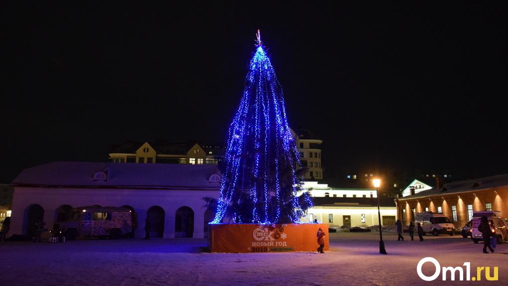 В мэрии Омска намекнули, где в городе установят новогоднюю елку