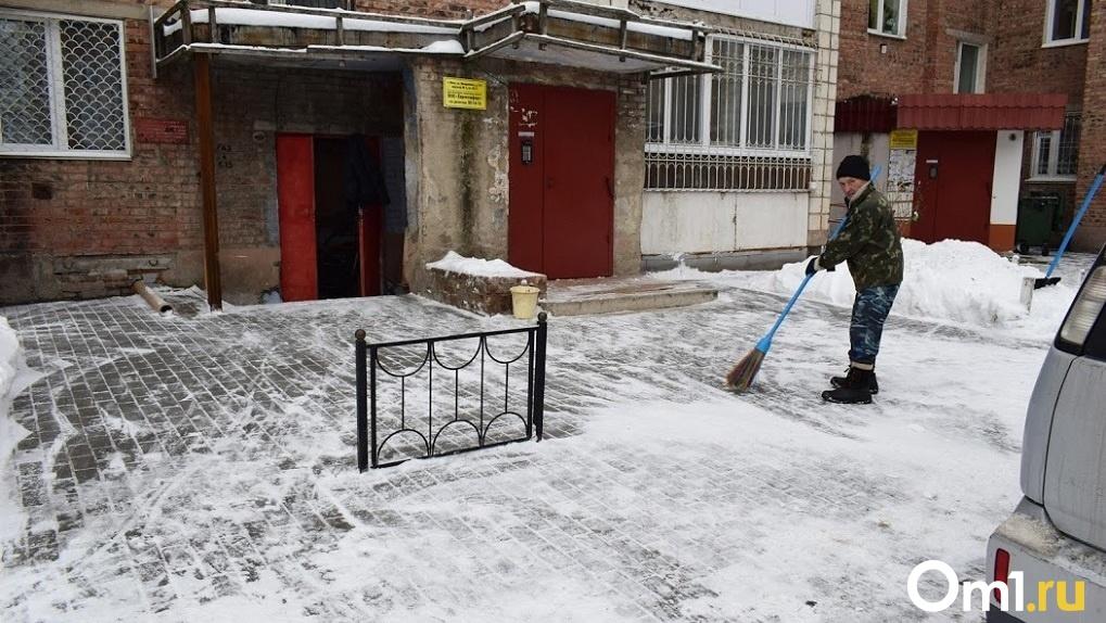 В Новосибирске пройдёт общегородской субботник