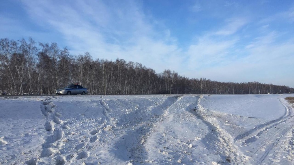 Двое маленьких детей едва не замёрзли на омской трассе. За три дня в регионе спасли девять человек