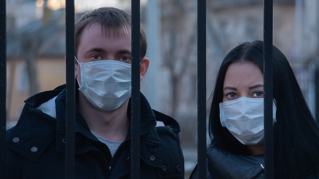 Стало известно, откуда коронавирус проник в Россию