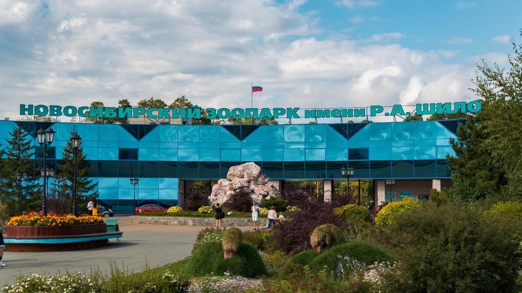 Кризис заставил повысить стоимость билетов в Новосибирском зоопарке