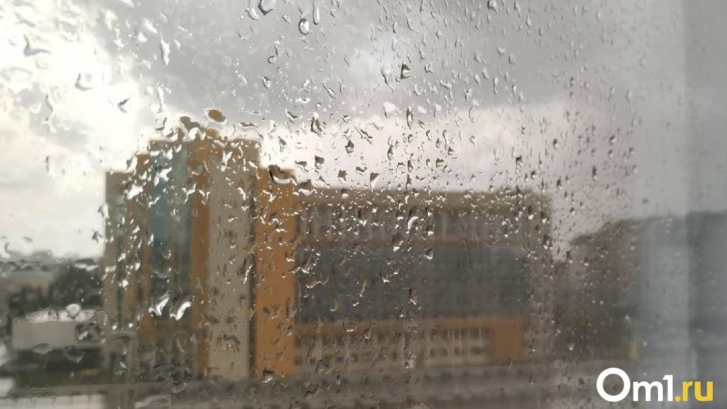 В Омск снова вернутся холода и дожди