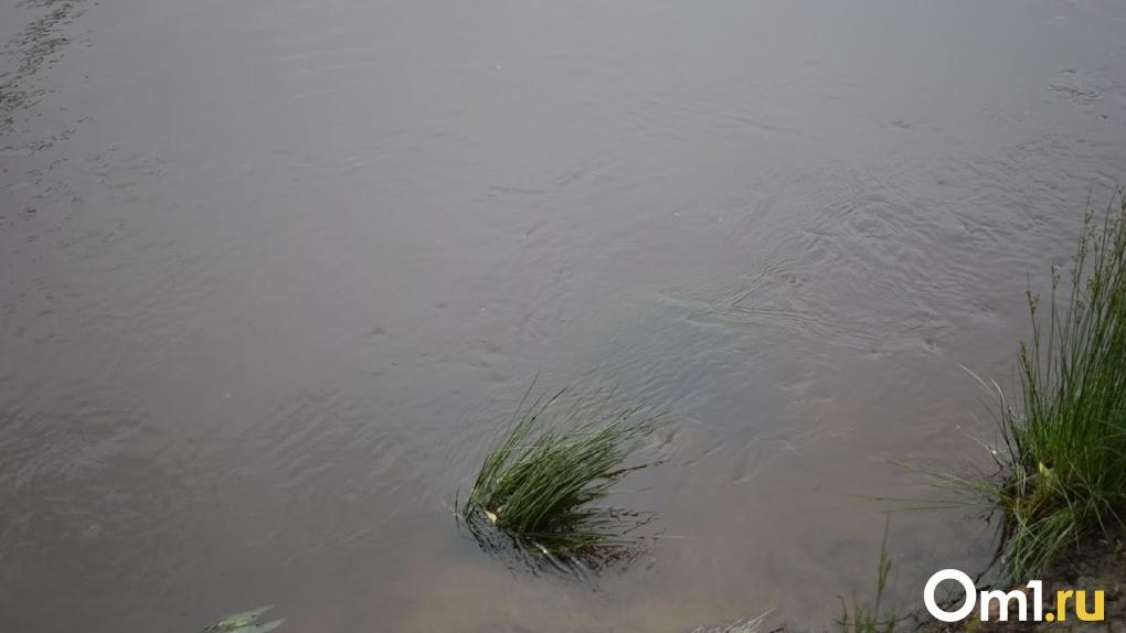 Спас старшую сестру, а сам утонул. Появились подробности смерти двух детей в Омской области