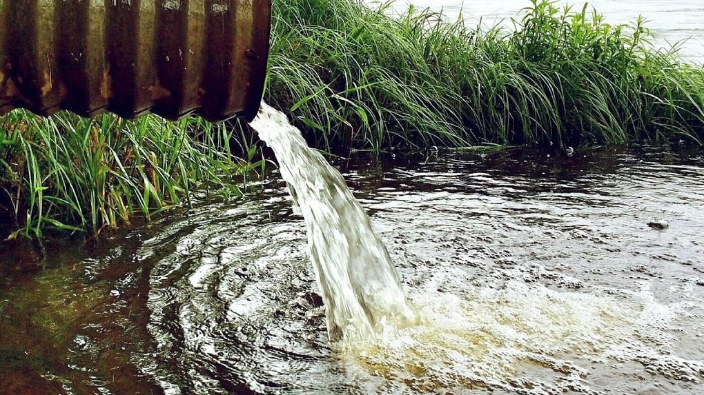 «В реку сбрасывали нефть»: новосибирских властей привлекли к ответственности за загрязнение водоёма