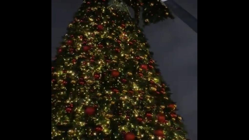 На главной новогодней ёлке Новосибирска впервые зажгли гирлянды