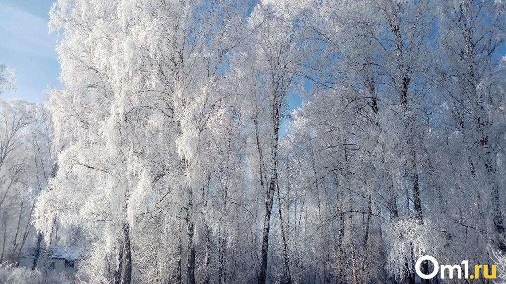 Синоптики прогнозируют ослабление морозов в Новосибирске: рассказываем, когда потеплеет