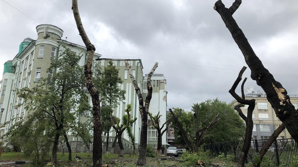 Мэрия Новосибирска опровергла информацию о застройке территории сквера рядом со СГУВТ