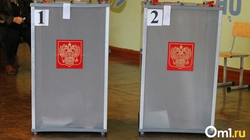 Омичи не смогут проголосовать за поправки в Конституцию дистанционно