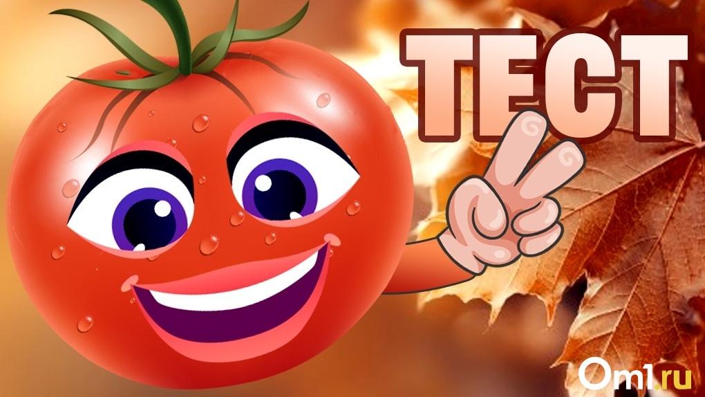 Весёлый помидор, милая тыква или ранимая капуста? Пройди тест и узнай, какой ты овощ
