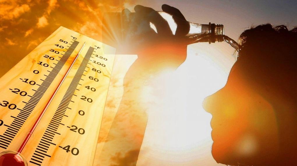 30-градусная жара ударит по Новосибирску