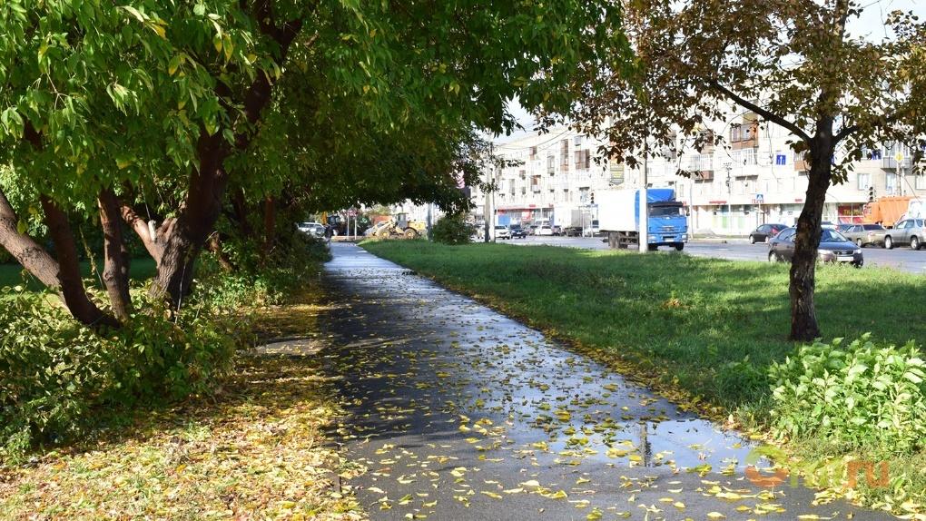 Рабочая неделя в Омске начнется с дождей