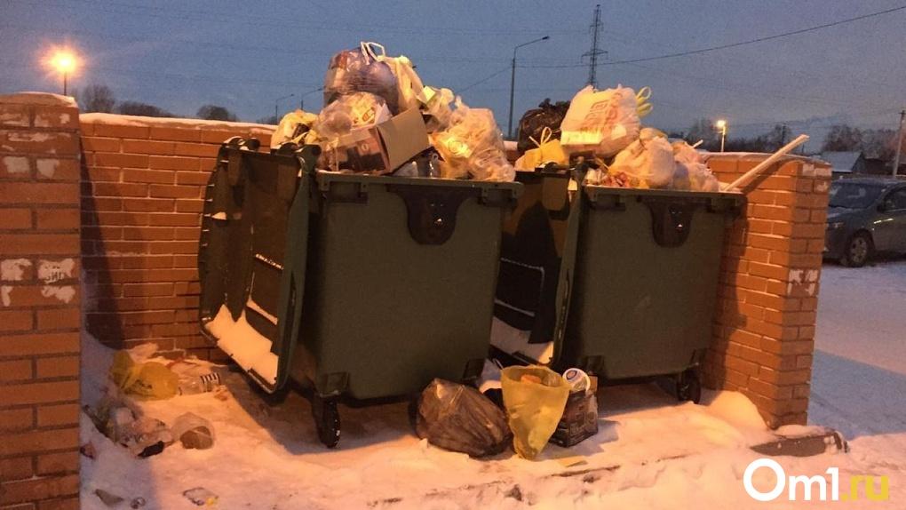 Правительство сможет лишить «Экологию-Новосибирск» статуса регионального мусорного оператора