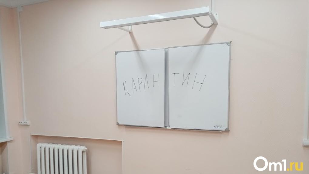 В Омске из-за коронавируса на частичную «дистанционку» ушли два колледжа