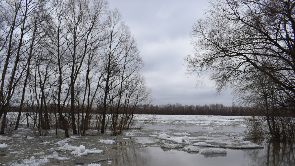 Омское Минприроды выставило на аукцион участок Иртыша