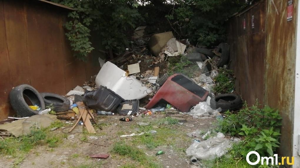 Больше 230 незаконных свалок ликвидировали в Новосибирской области