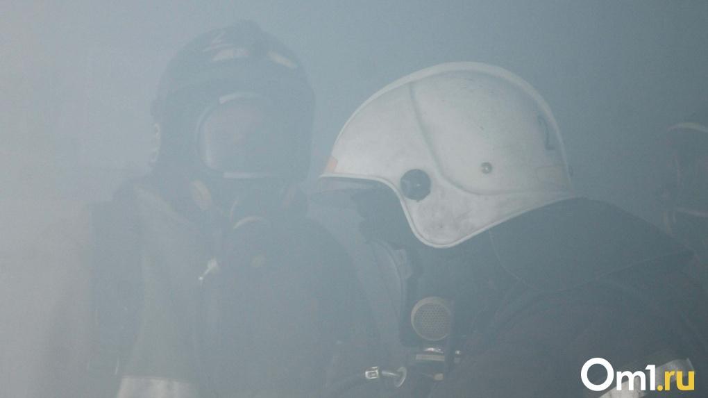 «Задохнулись угарным газом»: мужчина и женщина погибли при пожаре в частном доме в Новосибирской области