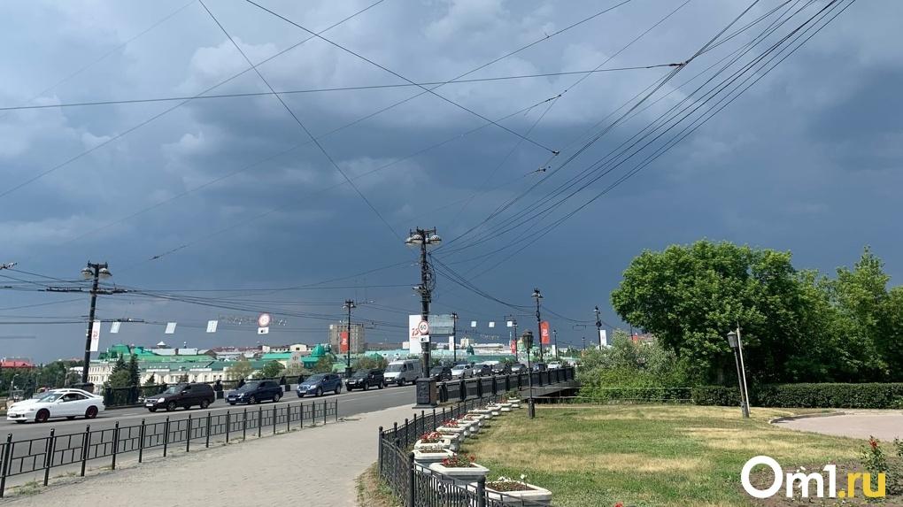 Синоптики рассказали, каким будет лето в Омской области