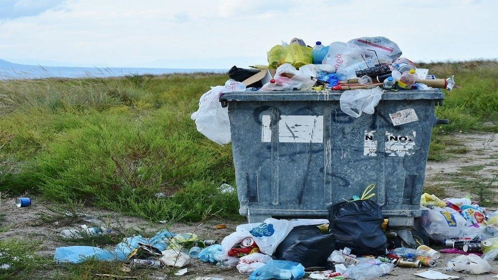 Две тонны вторсырья и 100 мешков мусора собрали с берегов Оби в Новосибирске