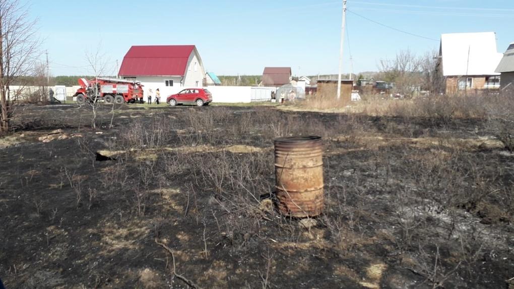Новосибирских аграриев лишат поддержки за поджог травы