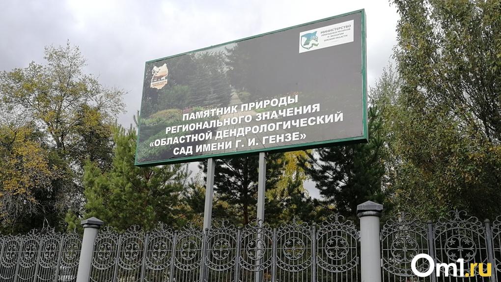 В проведении общественных слушаний по омскому дендросаду нашли нарушения