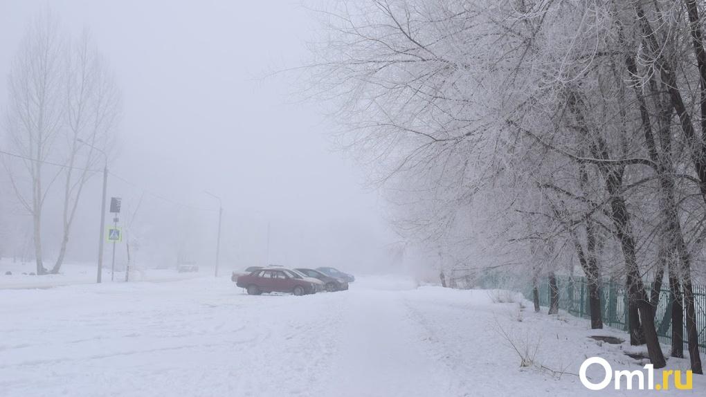 Названа дата первых ноябрьских морозов в Новосибирске