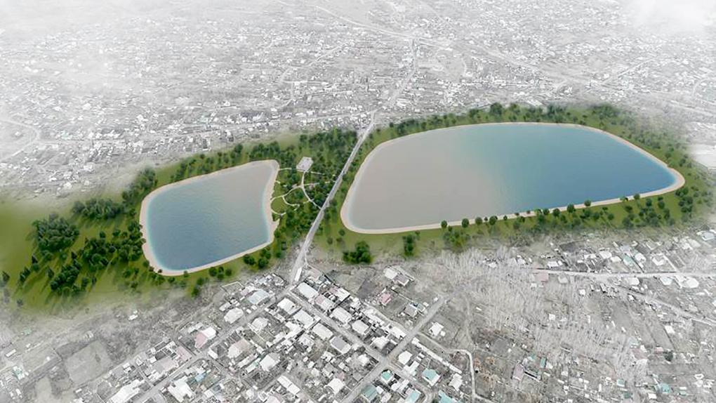 В Новосибирской области на месте болота Кучино создадут уникальное озеро