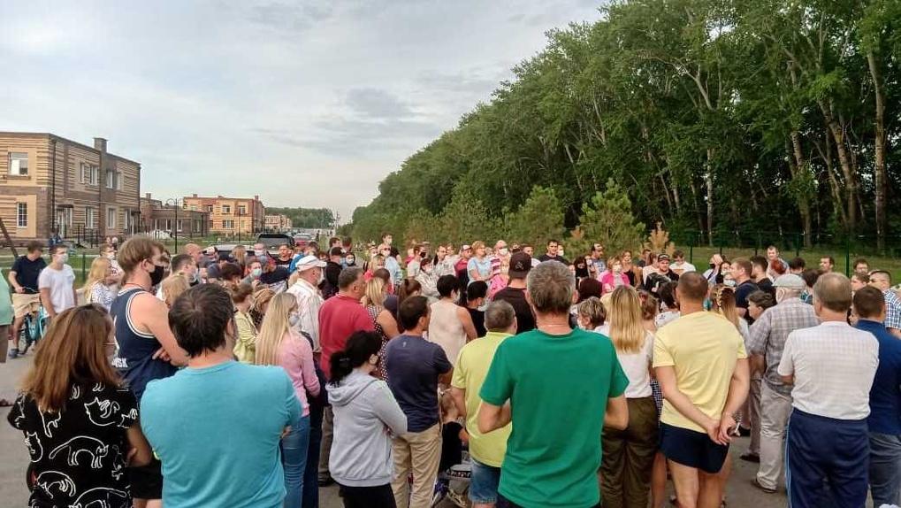 Жители посёлка под Новосибирском и «Новые люди» борются против вырубки тополиной рощи
